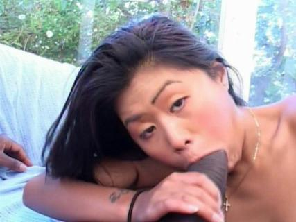 Asian bitch sucking a big black dong for fresh sperm from Free Blowjob Passport